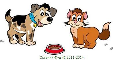 BiOMill - экологически чистый корм для собак и кошек. VD33aIyfznY