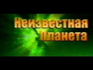 Неизвестная планета (ТНТ, 2000) О молниях