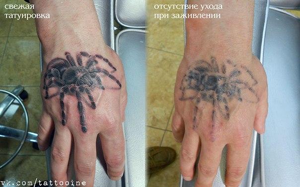 Правильный уход за свежей татуировкой