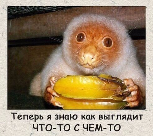 http://cs615824.vk.me/v615824336/18345/UGoTMJTLzGo.jpg