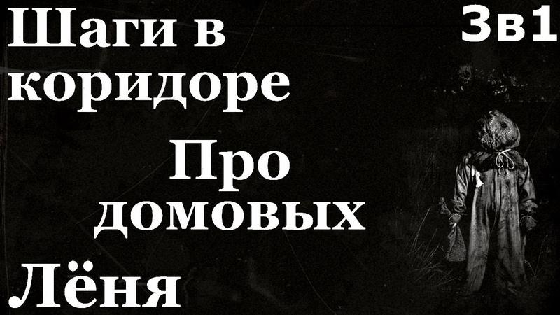 Истории на ночь 3в1 1 Шаги в коридоре 2 Про домовых 3 Лёня