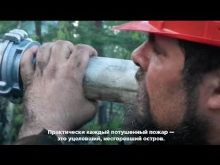 Общество добровольных лесных пожарных_ лагерь на Ладоге