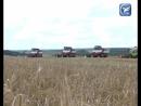 В 11 районах Вологодской области приступили к уборочной кампании