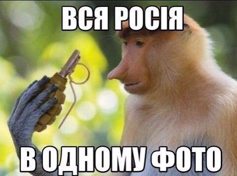 """ЕС """"обеспокоен"""" продолжением огня и гибелью мирных жителей на Донбассе - Цензор.НЕТ 2905"""