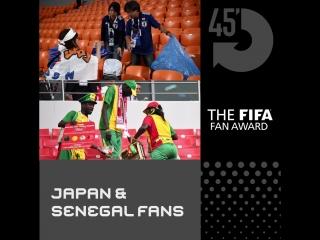 Претенденты на награду болельщикам FIFA Fan Award ?