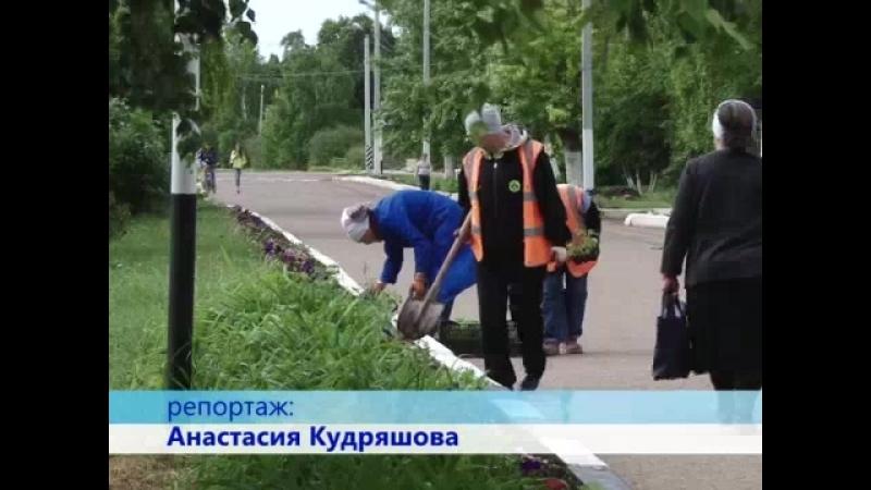 Занятость работников ООО Сток летом