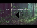 Intox - Iris Pt.2. (Tamas Skafar Remix)