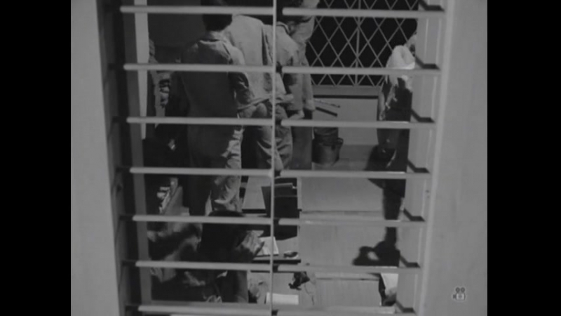 Furyō shōnen (1961, Сусуму Хани)