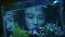 По пятам: Дьявольская рыба \ Ren mian yu: Hong yi xiao nu hai wai zhuan [оригинал]