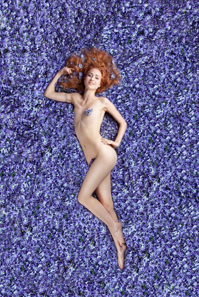 «Красота по-американски» Фотограф из Сан-Франциско Керри Фрут реализовала фотопроект «Красота по-американски». В нем участвовали 10 обнаженных женщин, лежащих в лепестках сирени. Таким образом