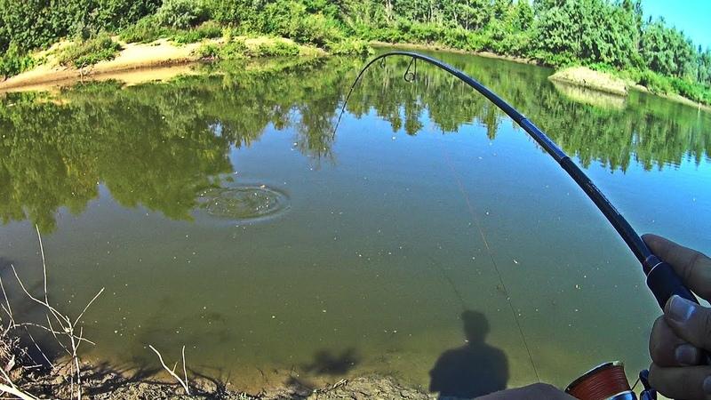 Щука на огромные приманки. Рыбалка в Волго-Ахтубинской пойме