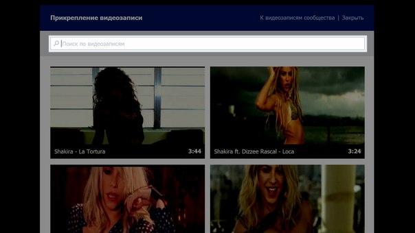 Строка поиска видео по сайту