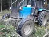 трудяга трактор Беларус в лесу