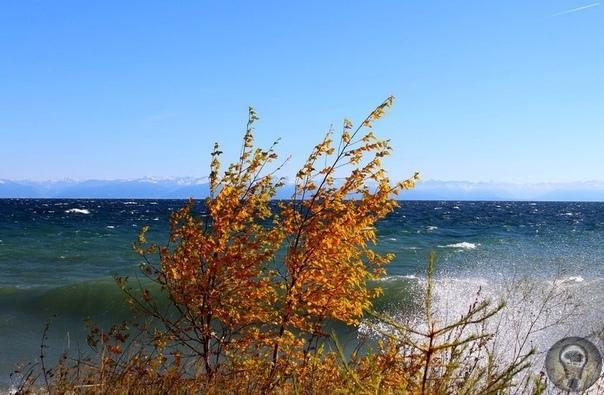 Байкал море мертвых: почему так считают буряты Испокон веков на берегах Байкала селились древние люди, но только в культуре бурят-монгольских племен родилось настоящее поклонение озеру. Даже