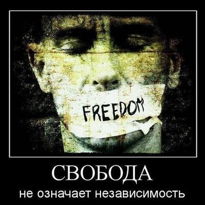 Андрей Халимов, 15 сентября 1990, Шостка, id52812186
