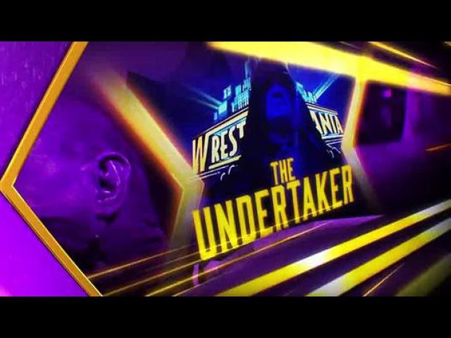 The Undertaker VS Brock Lesnar WWE WRESTLEMANIA 30