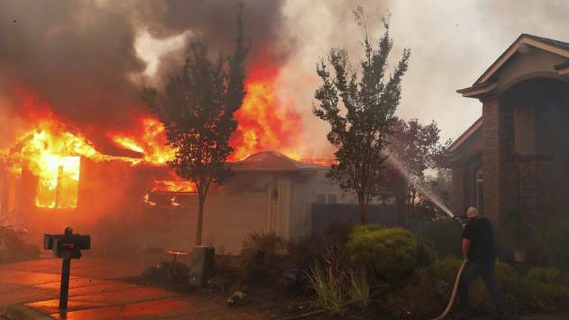 Fire The Plan To Burn Up California 1 - Deborah Tavares