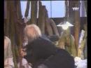 Дом2 драка (Собчак и Бородина)