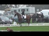 Weston Park KBIS CCJ Megan Cummings &amp Albert VI - Individual &amp Team Champions 2013