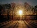 Orbital - One Perfect Sunrise (Phil Hartnoll Mix)