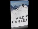 Дикая Канада Легенды Севера / 2016 / Full HD
