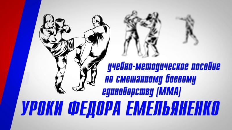 Фёдор Емельяненко Урок 7 - Стойка (акценты)