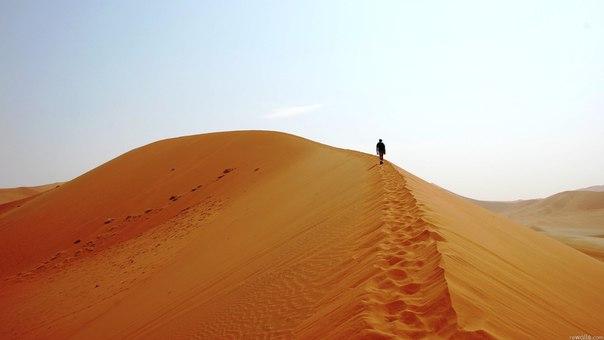 Мы в пустыне.