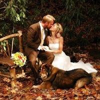 Оформление свадьбы в Рязани - Праздничная компания