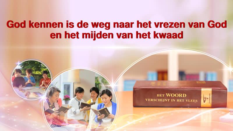 Gods woorden 'God kennen is de weg naar het vrezen van God en het mijden van het kwaad'