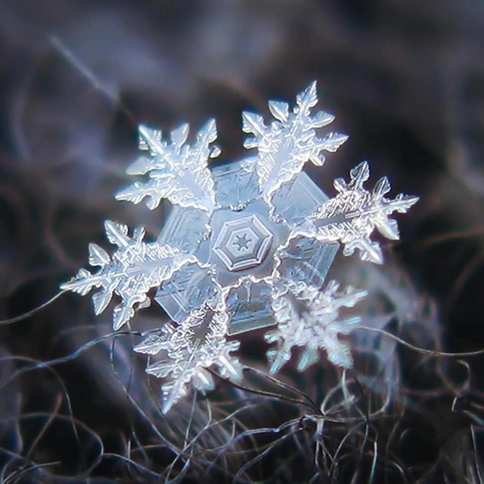 Мaкросъемка снeжинки