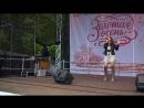 НАДИ Москва Парк Кузьминки 6 Октября 2018 Золотая Осень Live