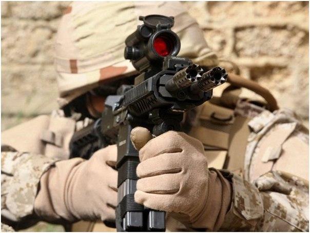 Двухствольная автоматическая винтовка Gilboa Snake (Израиль)