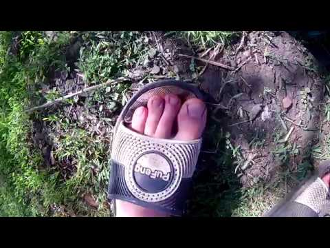 Тарас - мытье ноги