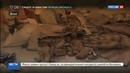 Новости на Россия 24 Спецназ предоставил уникальные кадры антинаркотической операции в Афганистане
