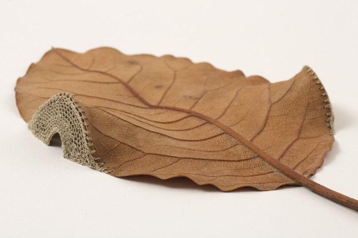Деликатные скульптуры из сухих листьев от Сюзанны Бауэр