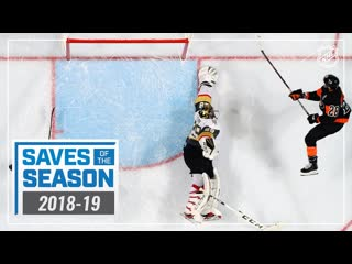 Best saves of the 18/19 nhl season