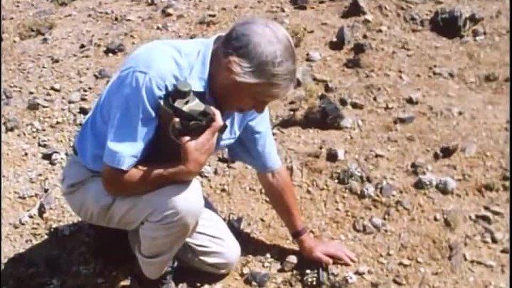 BBC Невидимая жизнь растений 6 Выживание Документальный 1995