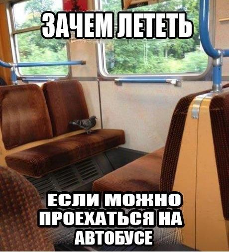 Ujyhm79e4ee