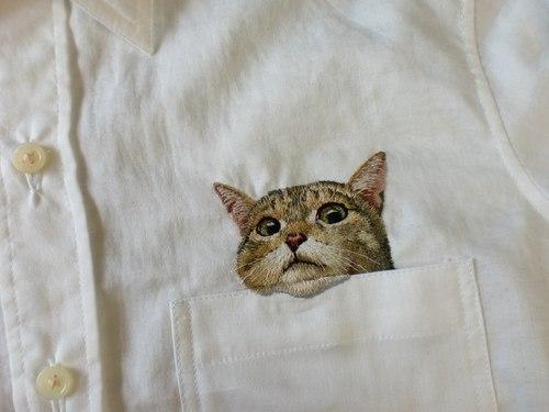 Вышивка для кухни.  Схемы крестом.  Часть 21 - Вышивка на рубашке - котик в кармашке Часть 22.  Фрукты.
