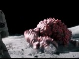 Почему нельзя есть бобы на Луне -...