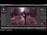 Обработка фото в Lightroom и Photoshop