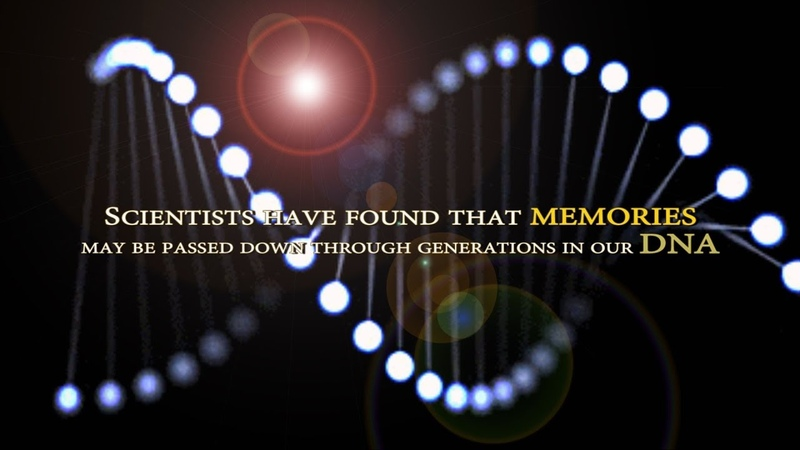 Memories may be passed down through generations in our DNA