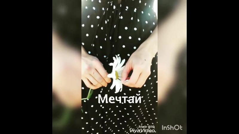 VID_125260915_023025_092.mp4