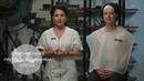 Всё об альгинатных масках BIOSEA proactif