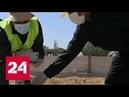 1200 трупов западная коалиция хоронила убитых сирийцев на игровых площадках и стадионах Россия 24