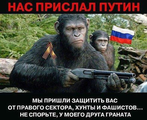 Россия предоставила временное политическое убежище подозреваемому в избиении Чорновол, - адвокат - Цензор.НЕТ 5904