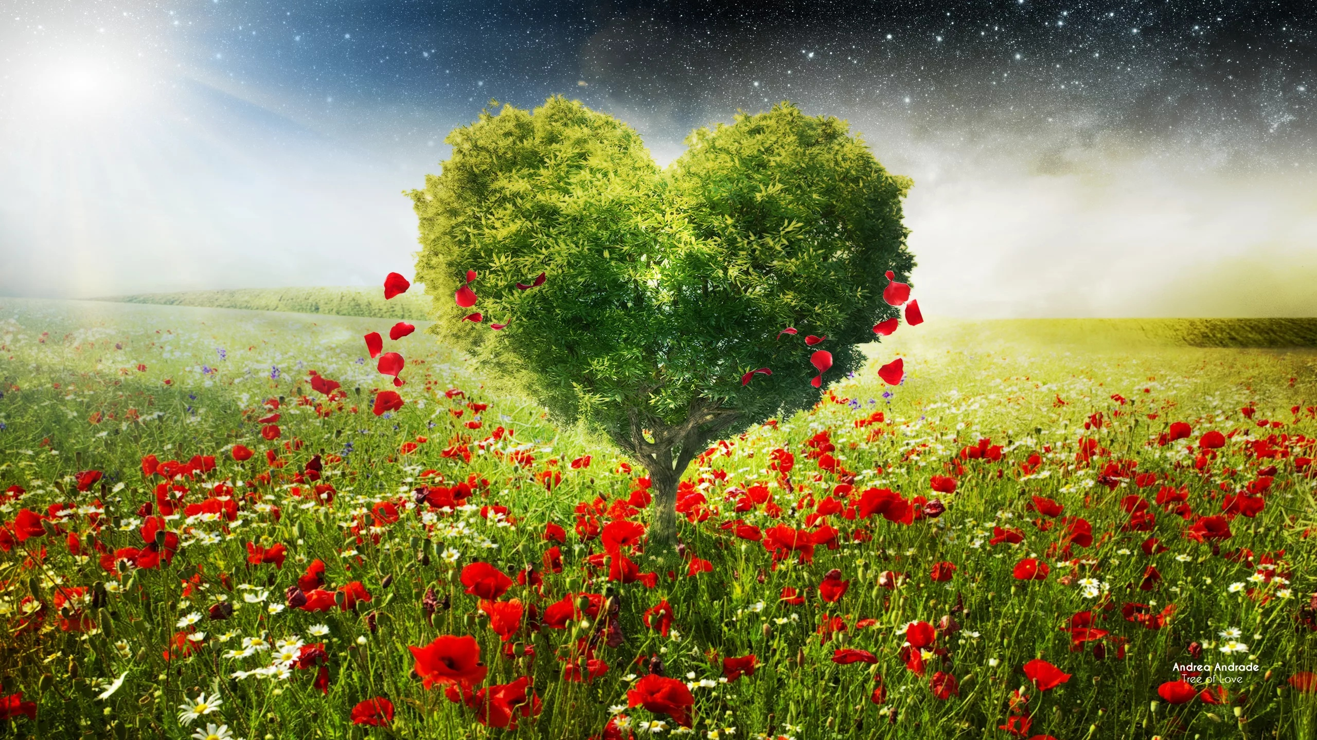 Открытки любви и природы, открытки