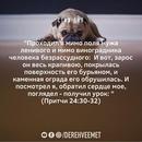 Ирина Вовченко фото #44