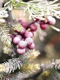 Зима... Морозная и снежная, для кого-то долгожданная, а кем-то не очень любимая, но бесспорно – прекрасная.  OLGIzbYHjng