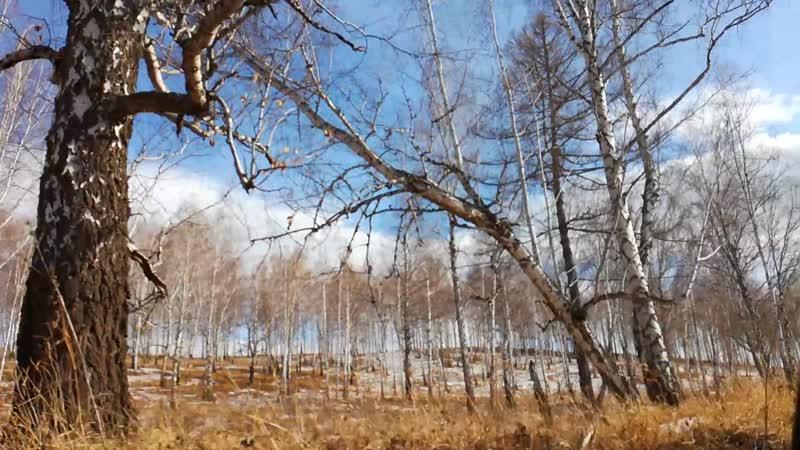 зимняя рыбалка Березовская ГРЕСС дорога через дачи